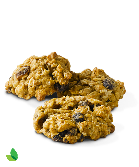 detail bb Oatmeal Raisin Cookies 3