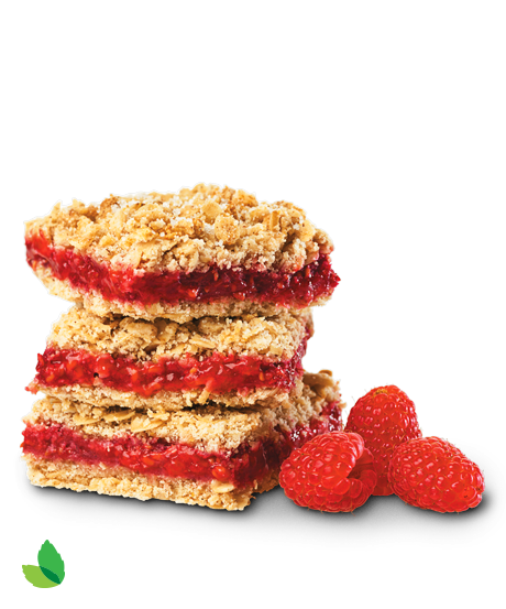 detail bb Raspberry Oatmeal Bars 3